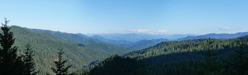 Pacific Coast Ranges from Grayback Road, CA